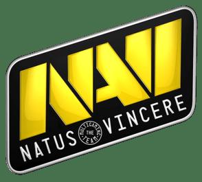 294px-Navi_logo