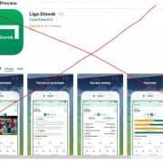 Скачать LigaStavok для ipad: описание процедуры